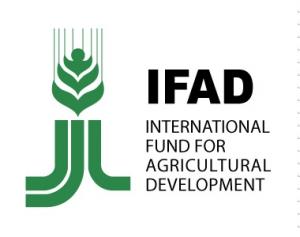 FIDA : Fonds International de Développement de l'Agriculture