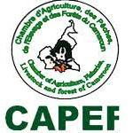 Nominations à la Chambre d'Agriculture, des Pêches, de l'Elevage et des Forets  (CAPEF) -  27 septembre 2021
